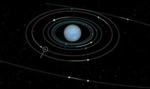 maanneptunus